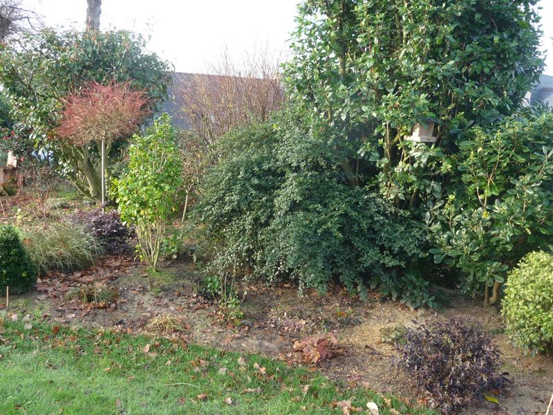 Comment bien entretenir son jardin en hiver consoroom for Entretenir jardin