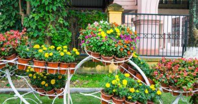 aménager un petit jardin